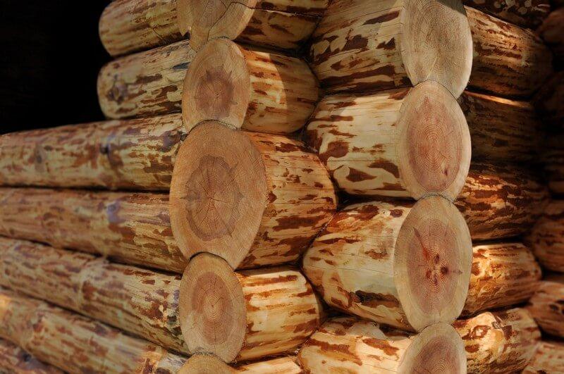 Сруб деревянного дома, до шлифовки